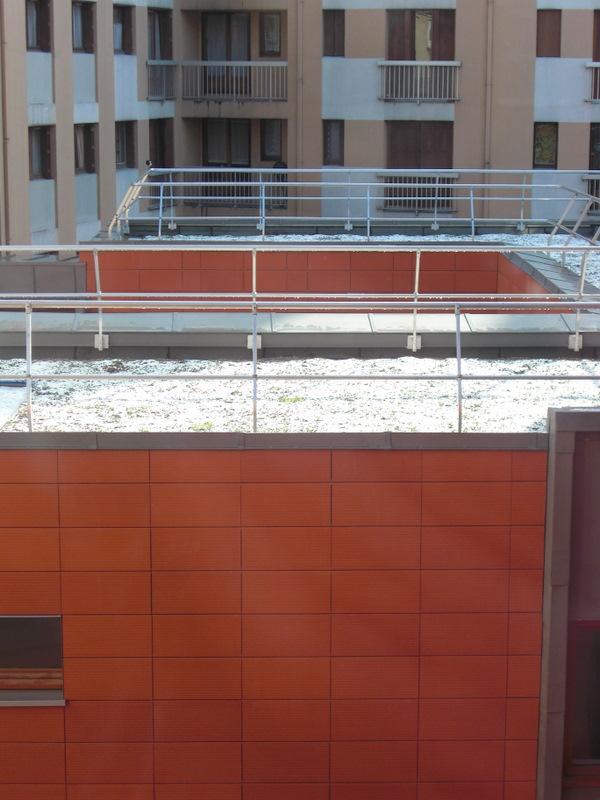 Premi re r novation d immeuble plan climat bbc de la ville de paris vertd - Toiture vegetalisee paris ...