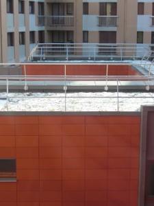 Rénovation BBC à Paris, toiture végétalisée
